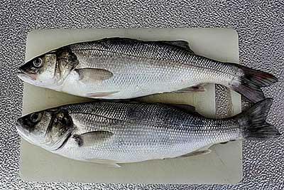 what type of fatty fish for keto diet